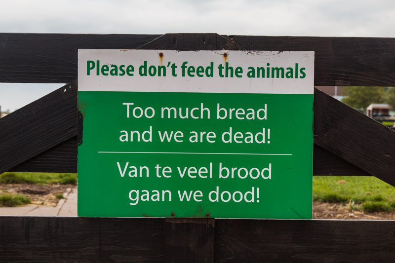 Best sign ever? It rhymes in both languages!