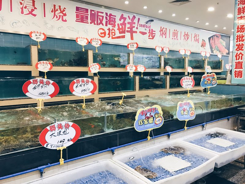 Choosing the seafood